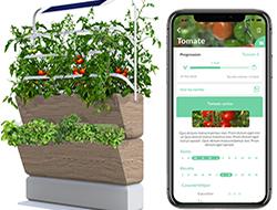 Agrove : la solution intelligente pour l'agriculture urbaine
